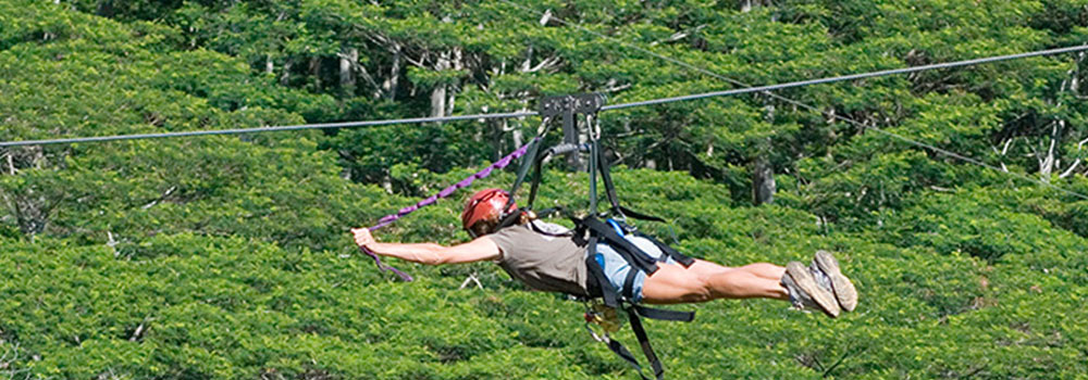 Ziplines on Kauai | Kid Friendly Activities | Oceanfront Rentals on Kauai