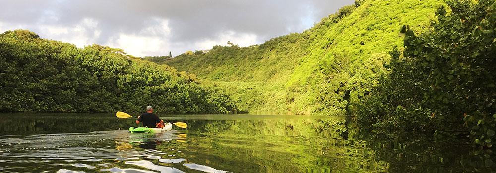 Kayaking the Wailua River | Kauai Activities | Oceanfront Rentals on Kauai