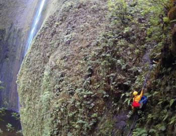 Scientist climbing cliff