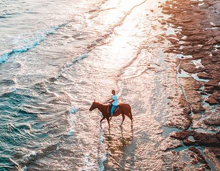 Horseback Riding on Kauai  | Oceanfront Rentals on Kauai