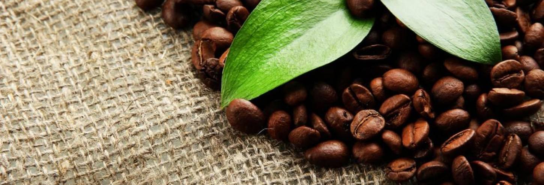 Chocolate & Coffee Festival
