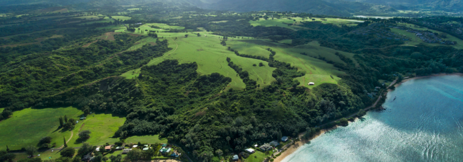 North Shore Preserve | Oceanfront Rentals on Kauai